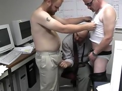 the bear office - pig daddy productions